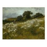 Across the Fields Postcard