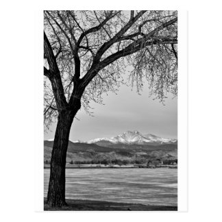 Across The Lake in Black and White Postcard