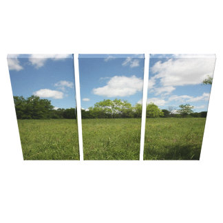 Across the Open Field: Wide Angle View Stretched Canvas Prints