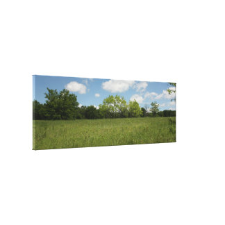 Across the Open Field: Wide Angle View Canvas Print