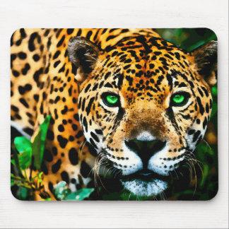 Acrylic Jaguar  Wildlife Art Mouse Pad
