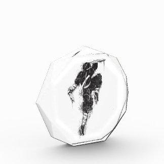 Acrylic Octagon Ninja Award