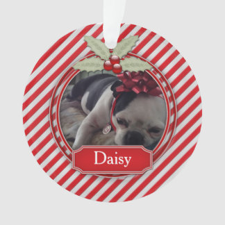 Acrylic Ornament Candy Cane Stripe Holly For Pets