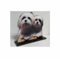 Acrylic Photo Sculpture Stand Up