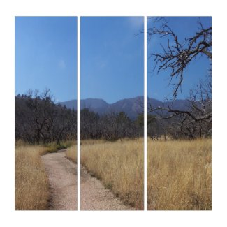 AcryliPrint Triptych Wall Art Trail