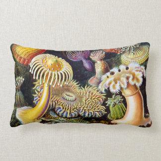 Actiniae by Ernst Haeckel Lumbar Pillow