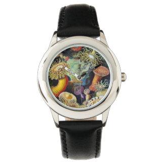 Actiniae by Ernst Haeckel Watch