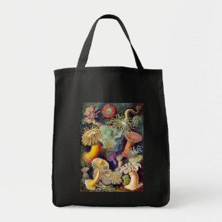 Actiniae illustration painting Germa Ernst Haeckel Canvas Bags