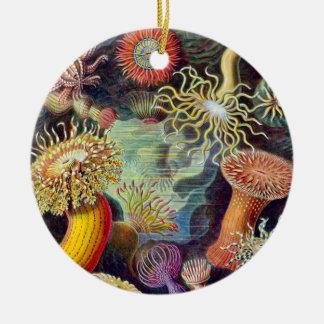 Actiniae illustration painting Germa Ernst Haeckel Double-Sided Ceramic Round Christmas Ornament