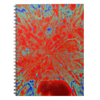 Action flower note books