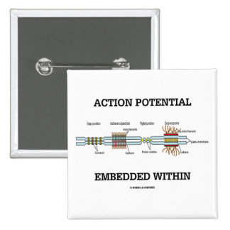 Action Potential Embedded Within (Cell Junctions) Pin