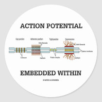 Action Potential Embedded Within (Cell Junctions) Sticker