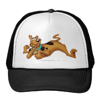 Actitud 13 del aerógrafo de Scooby Doo Gorros Bordados