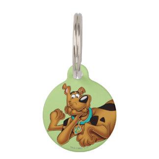 Actitud 13 del aerógrafo de Scooby Doo Placas De Mascota