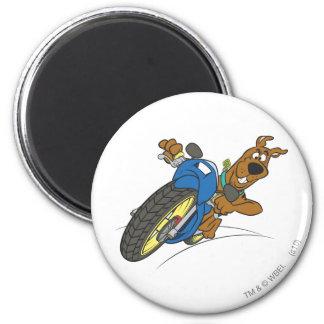 Actitud 23 del transporte de la meta de Scooby Doo Imán Redondo 5 Cm