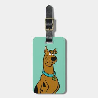 Actitud 27 de Scooby Doo Etiquetas Maletas