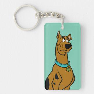 Actitud 27 de Scooby Doo Llavero Rectangular Acrílico A Doble Cara