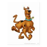 Actitud 3 del aerógrafo de Scooby Doo Tarjetas Postales