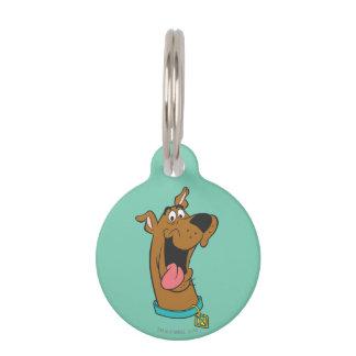 Actitud 49 de Scooby Doo Placas De Mascota
