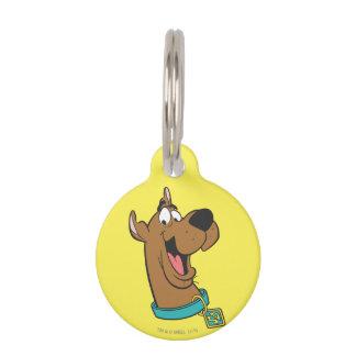 Actitud 85 de Scooby Doo Placas De Mascota