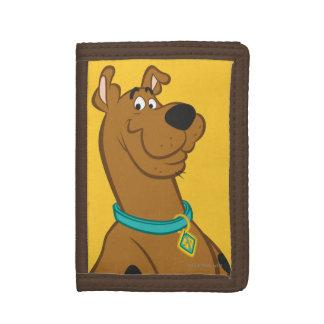 Actitud clásica de Scooby Doo el |