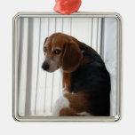 actitud del beagle ornamentos para reyes magos