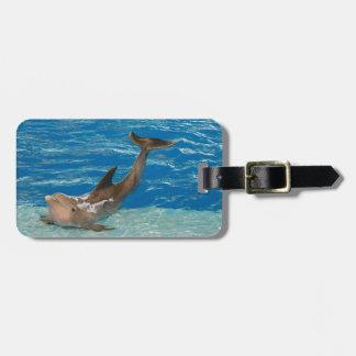 Actitud del delfín etiquetas de maletas