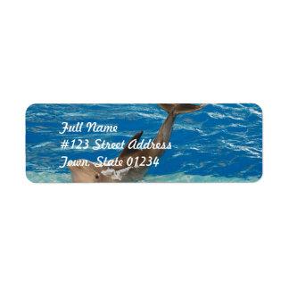Actitud del delfín etiquetas de remite