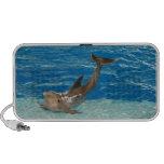 Actitud del delfín portátil altavoces