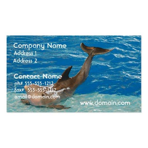 Actitud del delfín tarjeta de visita