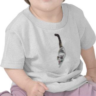 Actitud, gato camiseta