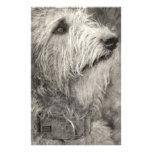 Actitud perfecta del Wolfhound irlandés Papelería