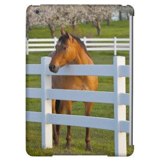 Actitudes del caballo por la huerta de cereza de c