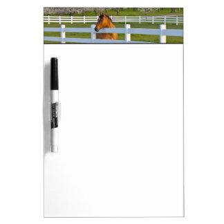 Actitudes del caballo por la huerta de cereza de c pizarras blancas de calidad