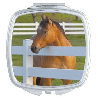Actitudes del caballo por la huerta de cereza de espejo maquillaje