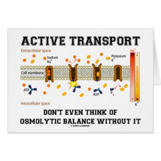 Active Transport Don't Think Of Osmolytic Balance Card