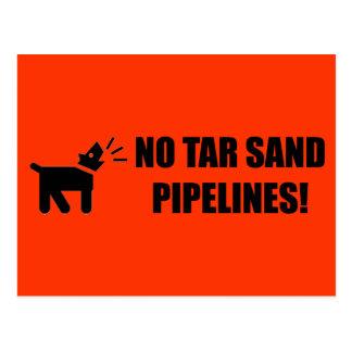 Activist Dog: Postcard