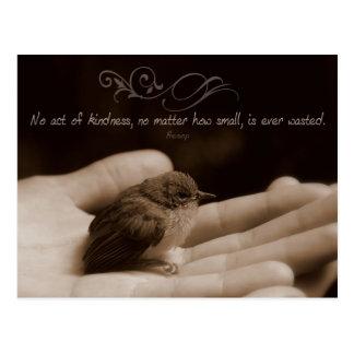 Acto de la postal inspirada de la amabilidad