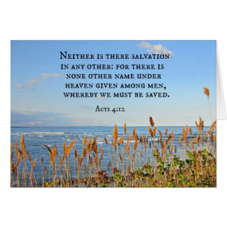 Acts 4:12 Neither is there salvation in any other. Card