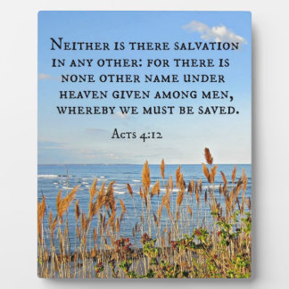 Acts 4:12 Neither is there salvation in any other. Plaque