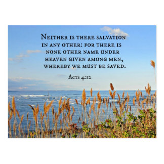 Acts 4:12 Neither is there salvation in any other. Postcard