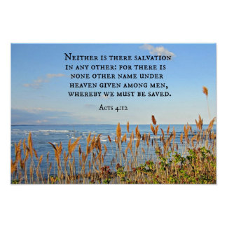 Acts 4:12 Neither is there salvation in any other. Poster