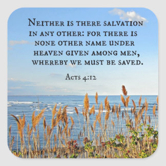 Acts 4:12 Neither is there salvation in any other. Square Sticker