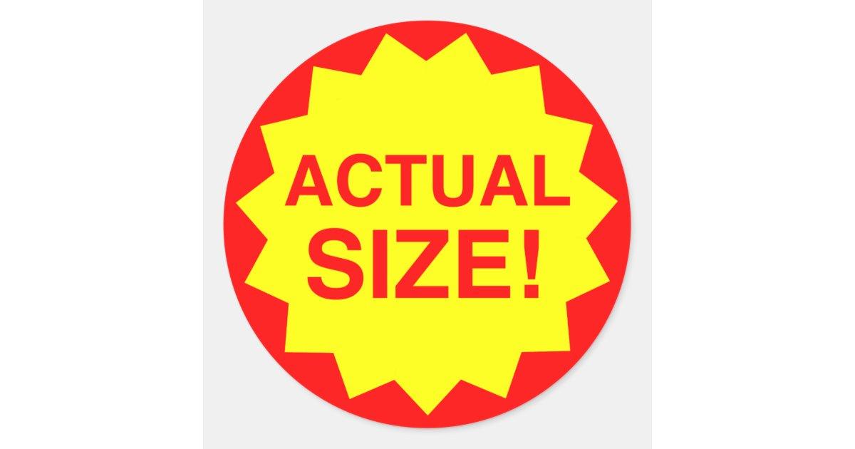 actual size steve jenkins pdf