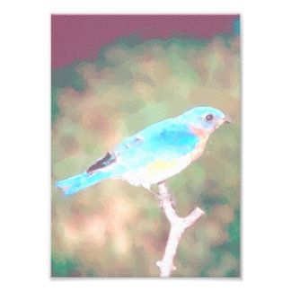 Acuarela azul del pájaro como impresión de la foto