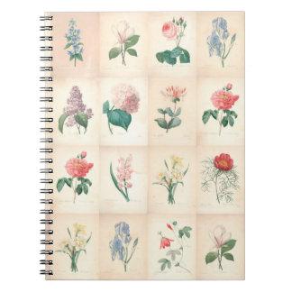 Acuarela botánica del vintage por el cuaderno de