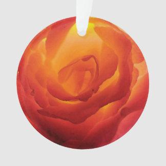 Acuarela color de rosa bicolor roja y amarilla