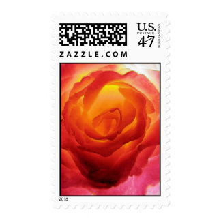 Acuarela color de rosa bicolor roja y amarilla sello postal