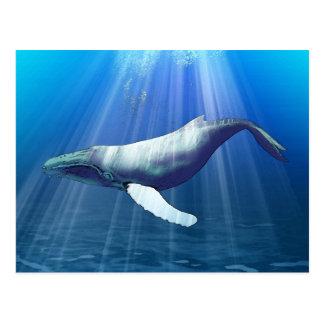 Acuarela de la ballena jorobada postales