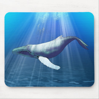 Acuarela de la ballena jorobada tapetes de raton
